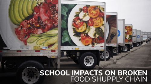 School Impacts on Broken Supply Chain