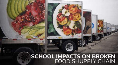 School Impacts on Broken Supply Chain