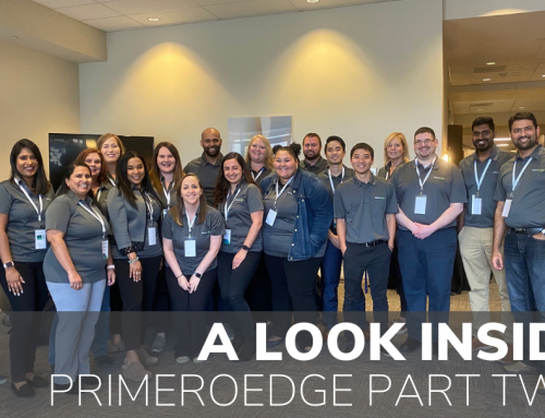 A Look Inside PrimeroEdge: Featuring Directors & Managers